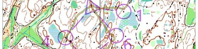 Orienteering intervals part 2 (2018-04-12)