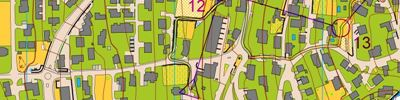 Sprint training part 2 (2018-05-04)